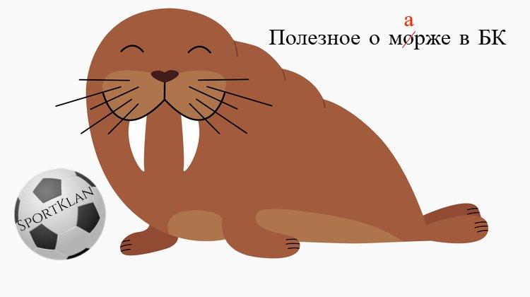 В чём подвох? БК снижают маржу на чемпионат Беларуси