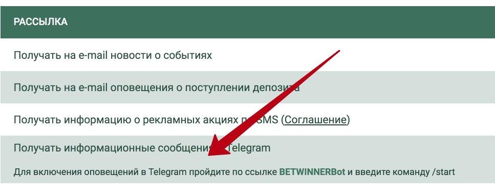 telegram betwinner
