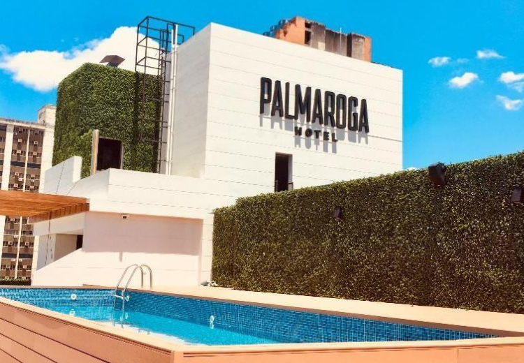 Palmagora